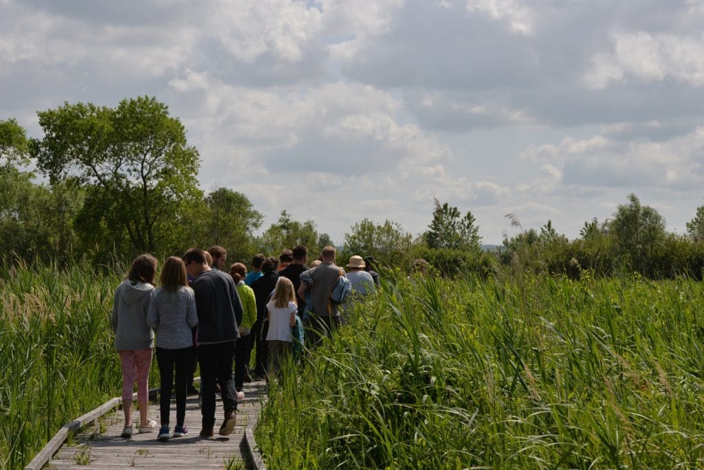 Marais de Guînes - Sentier des tétards - crédit Michael Lootens (3)-2