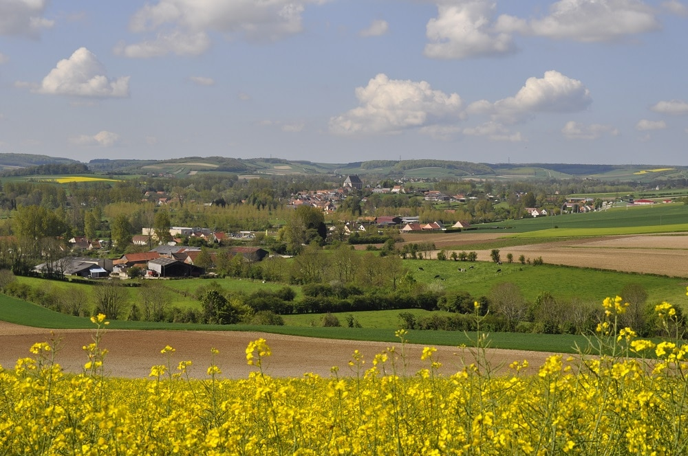 Les Vallons du Pays Licquois | OTPO