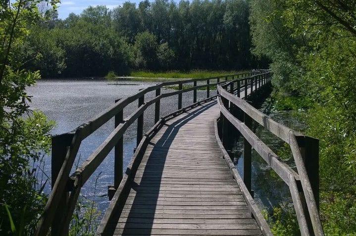 Marais de Guînes | OTPO