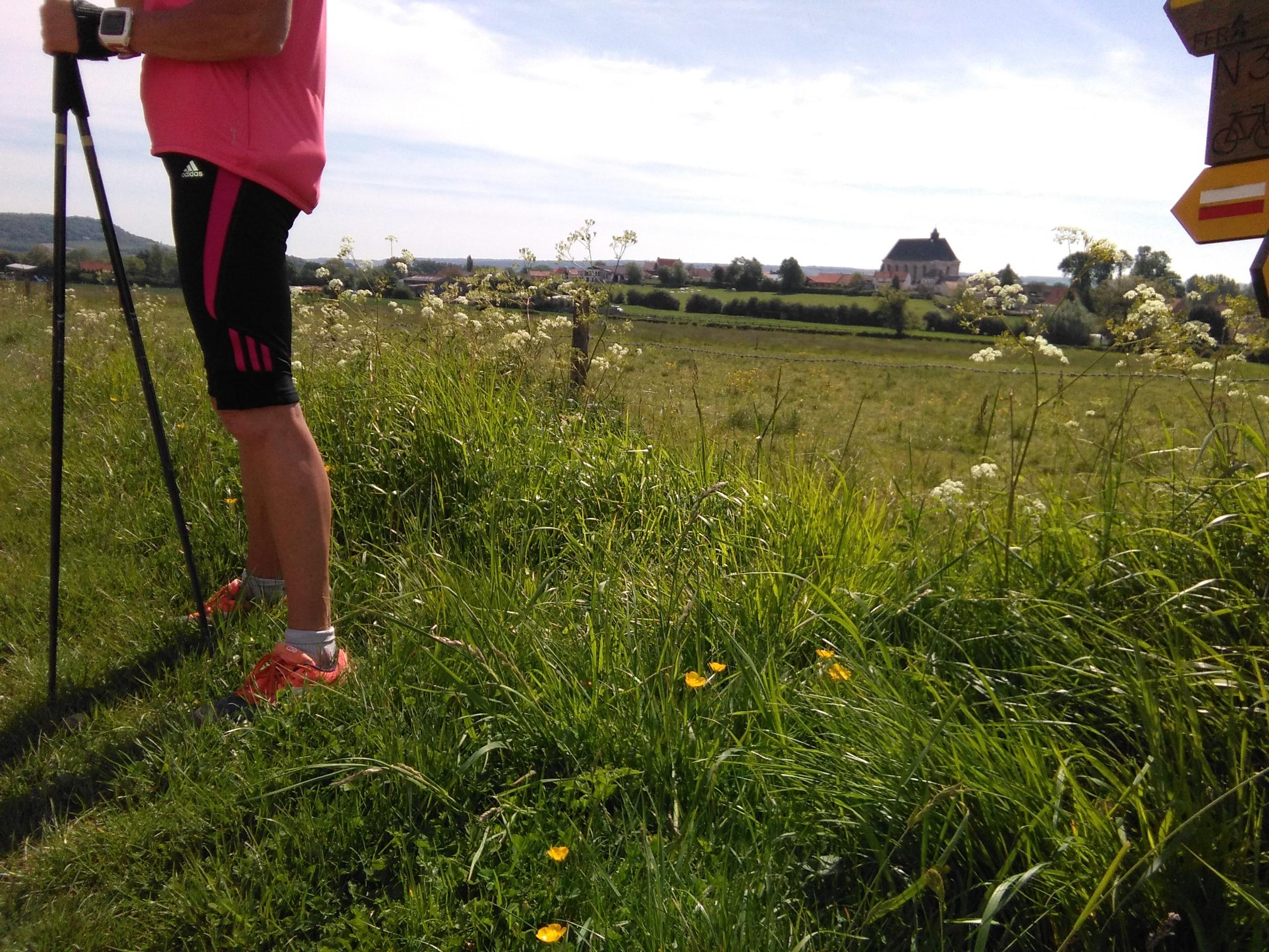 The Nordic Walking