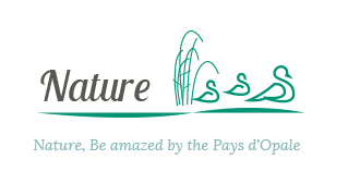 Picto_Nature_OT-Pays-d'opale