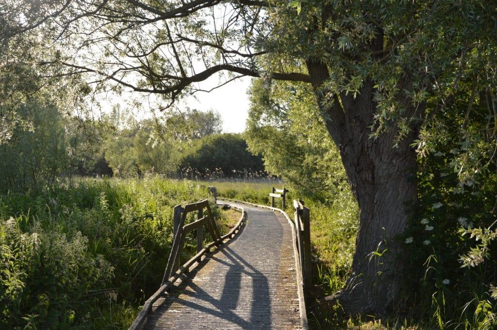 Marais de Guînes OTPO